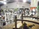 Biomecánica - U Gym_10